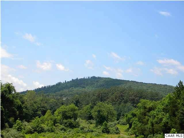 Ambrose Commons Drive Lot 28, CHARLOTTESVILLE, VA 22903 (#503461) :: ExecuHome Realty