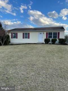 3862 Albert Avenue, GREENCASTLE, PA 17225 (#PAFL178698) :: The Joy Daniels Real Estate Group