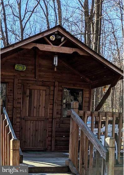 301 Great Mountain Lane, WINCHESTER, VA 22602 (#VAFV163742) :: Colgan Real Estate