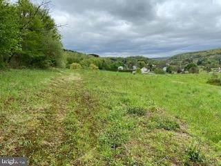0 Mill Drive, TAMAQUA, PA 18252 (#PASK135216) :: Colgan Real Estate