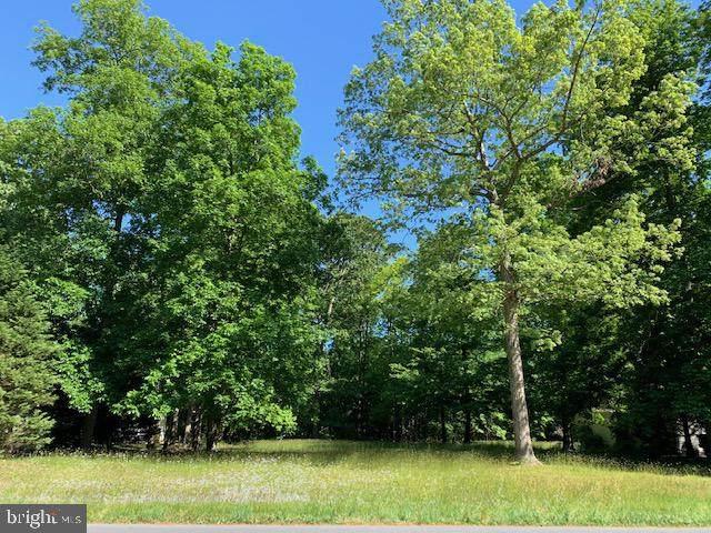 3 Woodlyn Estates, MILLSBORO, DE 19966 (#DESU183072) :: Shamrock Realty Group, Inc