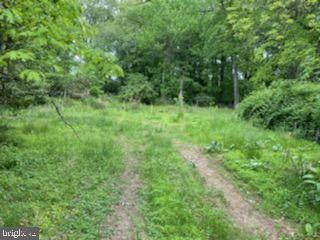 1321 Hunter Mill Road, VIENNA, VA 22182 (#VAFX1201570) :: Bic DeCaro & Associates