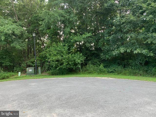 31 Pleasant View Court, MILLSBORO, DE 19966 (#DESU2002884) :: Team Martinez Delaware