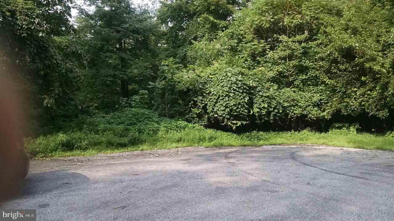 2810 County Line Road - Photo 1