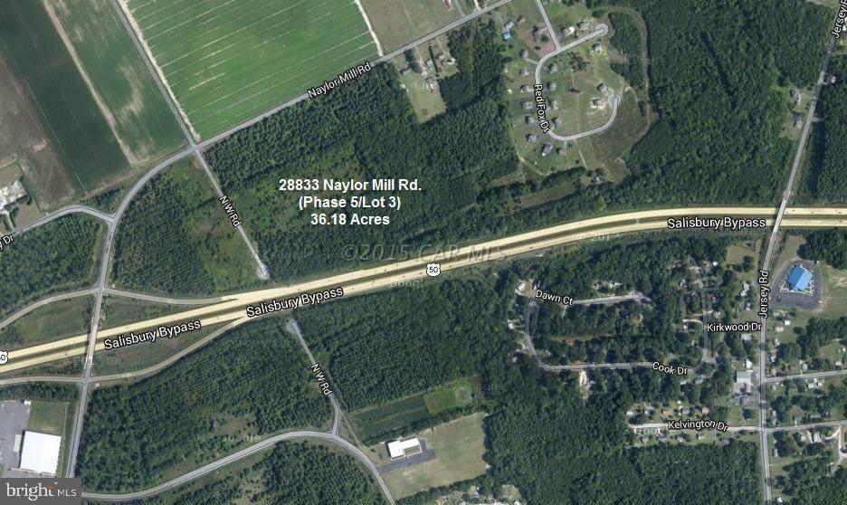 28833 Naylor Mill Road - Photo 1