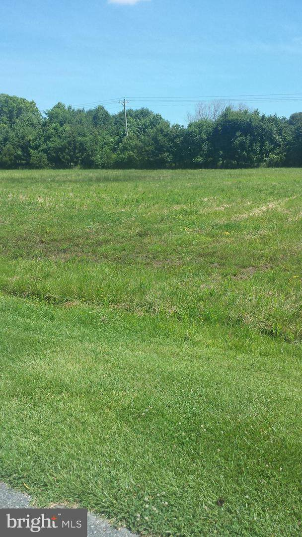 Rollie Rd East Lot 3 E, BISHOPVILLE, MD 21813 (#1001562286) :: The Putnam Group