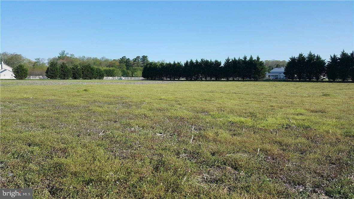 Lot 2 Piney Grove Road - Photo 1