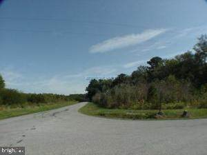 Lot 111 Johnson Neck Road - Photo 1