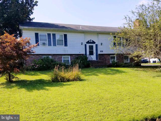 225 Nichols Manor Drive, STEVENSVILLE, MD 21666 (#MDQA140786) :: The Daniel Register Group