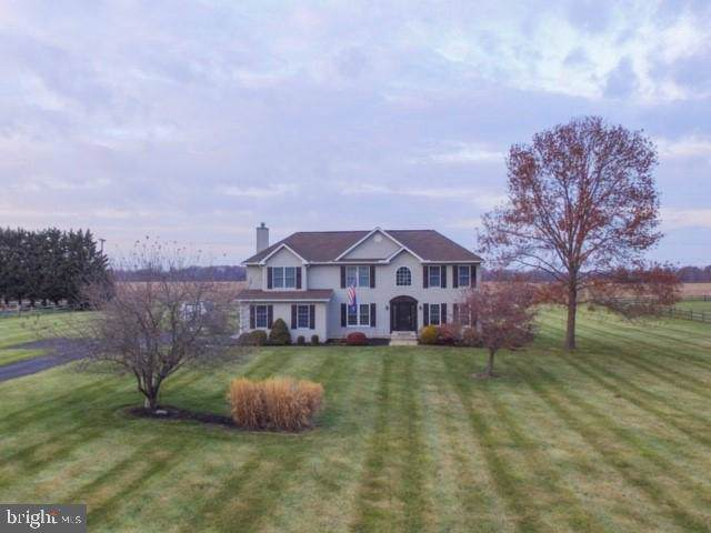 224 Tralee Drive, MIDDLETOWN, DE 19709 (#DENC491200) :: RE/MAX Coast and Country