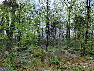 0 Mountain Falls Trail, WINCHESTER, VA 22603 (#VAFV157130) :: Pearson Smith Realty