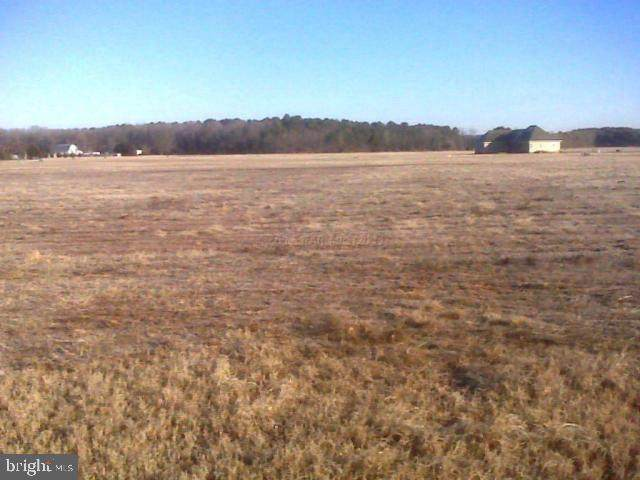 Lot 2 Crooked Oak Lane, SALISBURY, MD 21801 (#1001562106) :: SP Home Team
