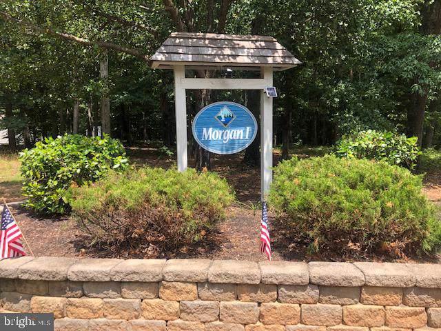 15510 Heth Drive, MINERAL, VA 23117 (#VASP201010) :: Bruce & Tanya and Associates