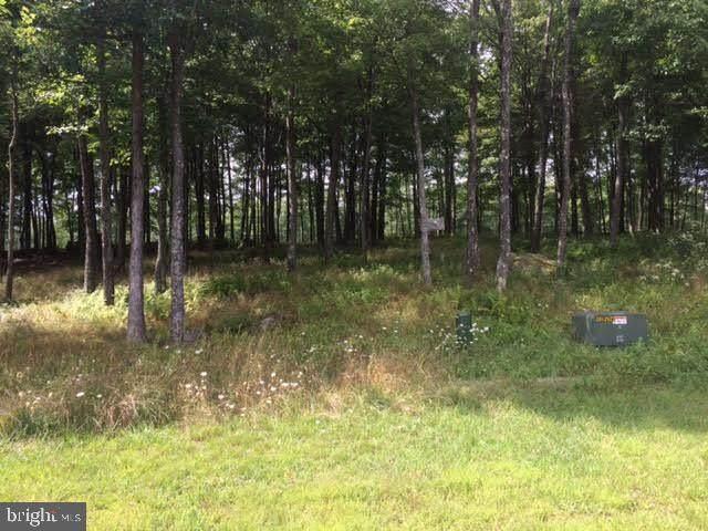 Lot 42 Sandstone Circle, MC HENRY, MD 21541 (#MDGA128770) :: Coleman & Associates