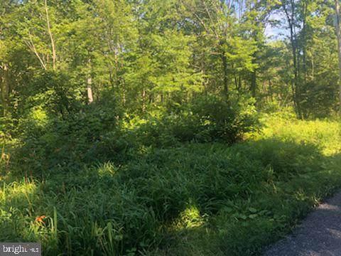 1405 Green Ridge Road, ORRTANNA, PA 17353 (#1001946098) :: Flinchbaugh & Associates
