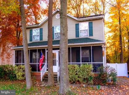 825 Petinot Place, STEVENSVILLE, MD 21666 (#MDQA100236) :: AJ Team Realty