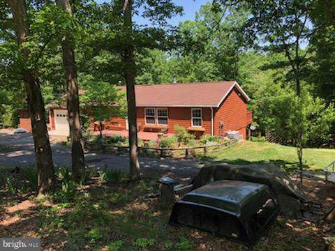 641 Little Mountain Drive, ROMNEY, WV 26757 (#WVHS105130) :: Great Falls Great Homes