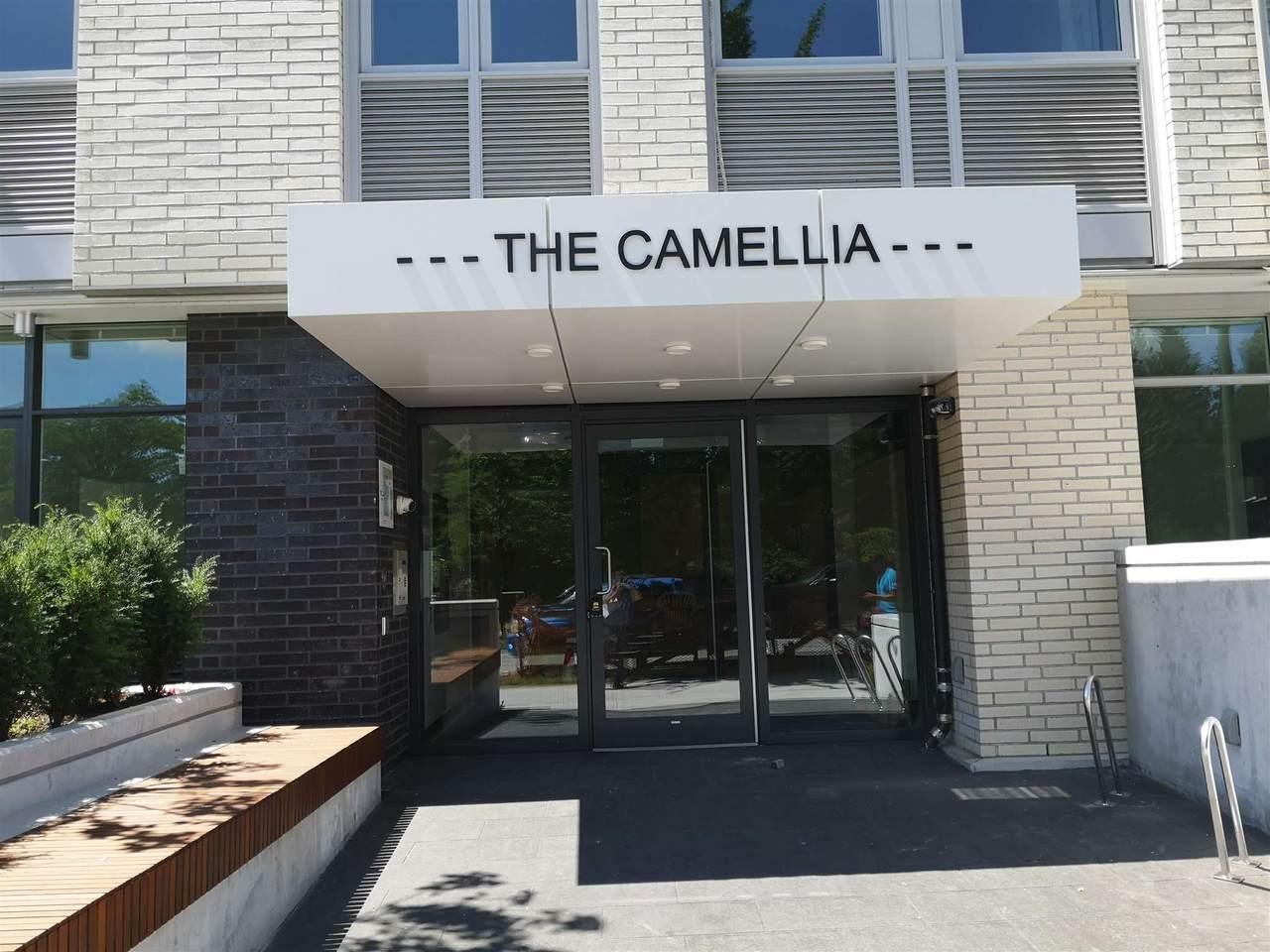 6733 Cambie Street - Photo 1