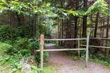 341 Aerie Tree Lane - Photo 25
