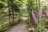 341 Aerie Tree Lane - Photo 27