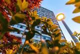 6631 Minoru Boulevard - Photo 13