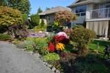 46431 Stoney Creek Drive - Photo 13