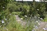 48859 Elk View Road - Photo 1