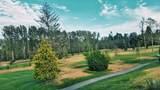 5110 Cedar Springs Drive - Photo 12