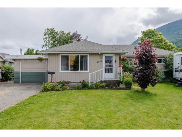 4566 Wilson Road, Yarrow, BC V2R 5B9 (#R2176592) :: HomeLife Glenayre Realty