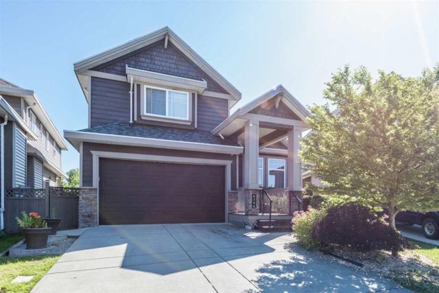 8396 211 Street, Langley, BC V2Y 0B9 (#R2180929) :: HomeLife Glenayre Realty