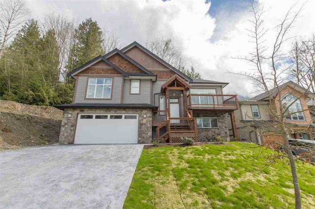 50424 Kingston Drive, Chilliwack, BC V4Z 0C2 (#R2180953) :: HomeLife Glenayre Realty