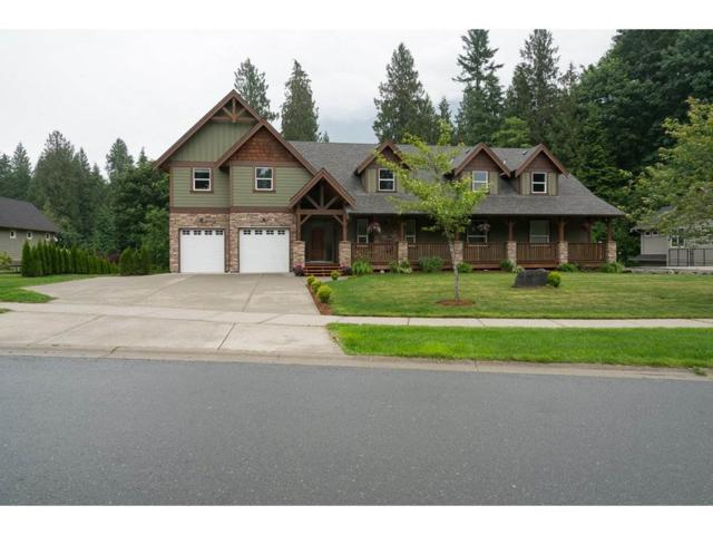 10298 Wildrose Drive, Rosedale, BC V0X 1X1 (#R2180969) :: HomeLife Glenayre Realty
