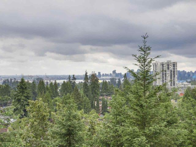 2004 Fullerton Avenue #1010, North Vancouver, BC V7P 3G8 (#R2181180) :: HomeLife Glenayre Realty