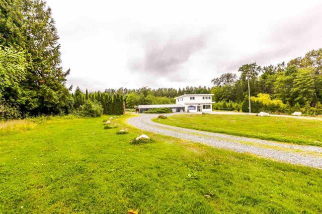26306 56 Avenue, Langley, BC V4W 1J7 (#R2181250) :: HomeLife Glenayre Realty