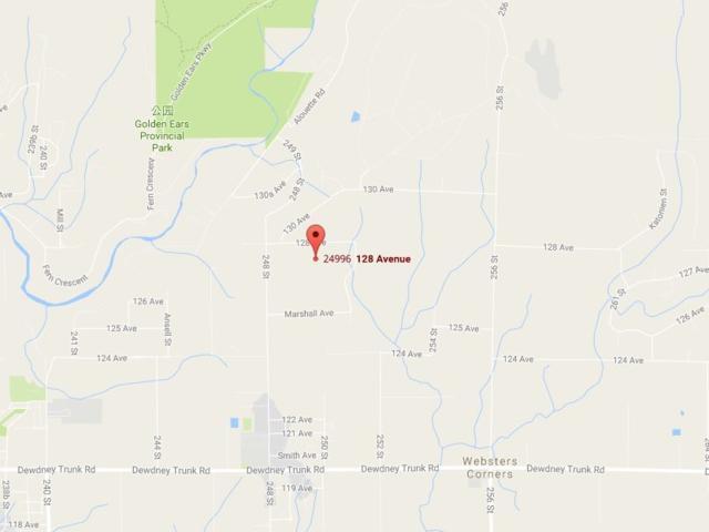 24996 128 Avenue, Maple Ridge, BC V4R 1S2 (#R2181420) :: HomeLife Glenayre Realty