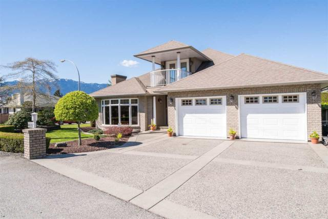 46093 Hope River Road, Chilliwack, BC V2P 3P1 (#R2181442) :: HomeLife Glenayre Realty