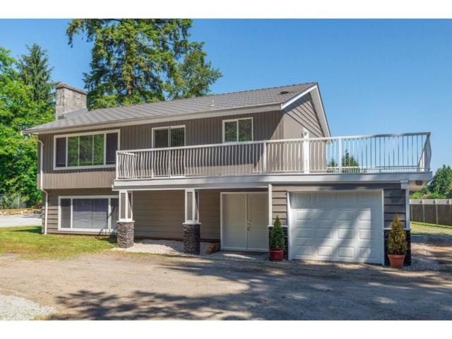 17817 97 Avenue, Surrey, BC V4N 4B4 (#R2186043) :: Kore Realty Elite