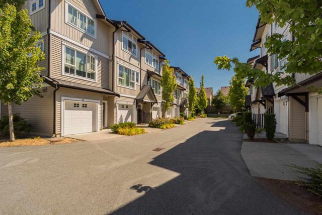 2450 161A Street #114, Surrey, BC V3Z 8K4 (#R2191262) :: West One Real Estate Team