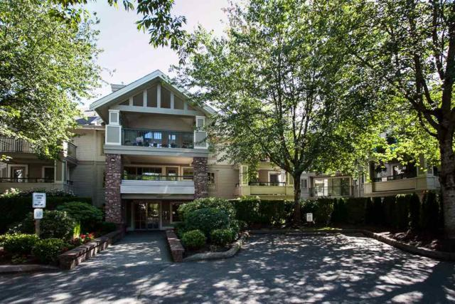 22025 48 Avenue #320, Langley, BC V3A 8L2 (#R2192847) :: Titan Real Estate - Re/Max Little Oak Realty