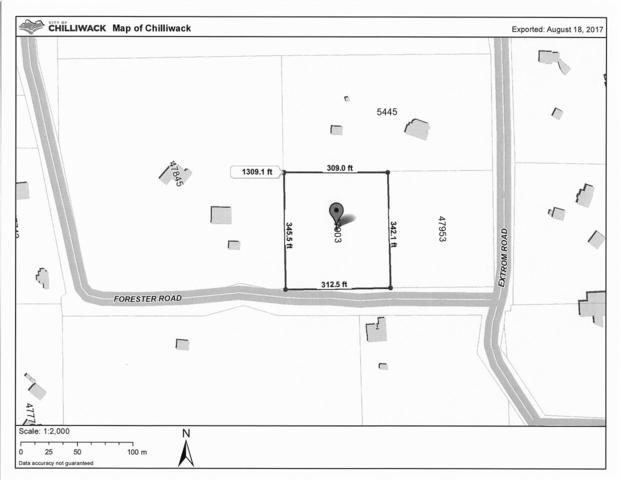 47903 Forester Road, Chilliwack, BC V2R 4M6 (#R2197991) :: HomeLife Glenayre Realty