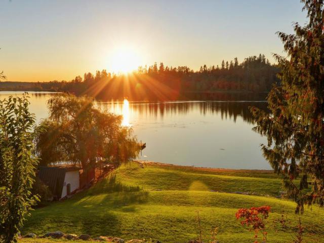 9651 Silverglen Drive, Mission, BC V4S 1J2 (#R2198061) :: HomeLife Glenayre Realty
