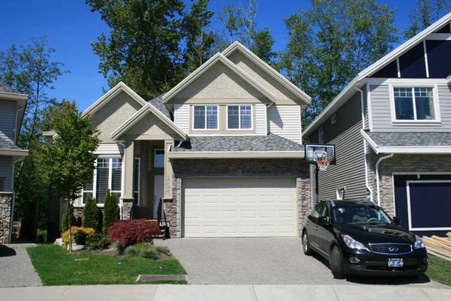 20033 74 Avenue, Langley, BC V4B 6L1 (#R2198194) :: HomeLife Glenayre Realty