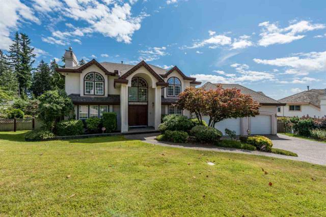 3017 Plateau Boulevard, Coquitlam, BC V3E 2W7 (#R2198411) :: HomeLife Glenayre Realty