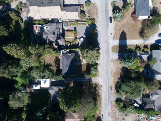 10491 127 Street, Surrey, BC V3V 5K3 (#R2205486) :: Kore Realty Elite