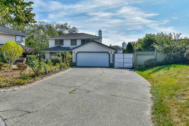 14666 85 Avenue, Surrey, BC V3S 7R4 (#R2207575) :: Kore Realty Elite