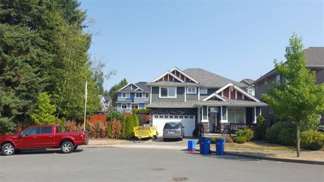 10150 241 Street, Maple Ridge, BC V2W 0E7 (#R2208408) :: HomeLife Glenayre Realty
