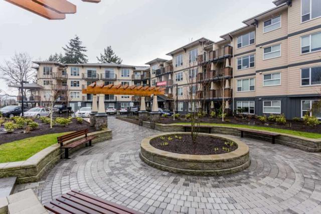 2565 Campbell Avenue #413, Abbotsford, BC V2S 0E3 (#R2208734) :: HomeLife Glenayre Realty