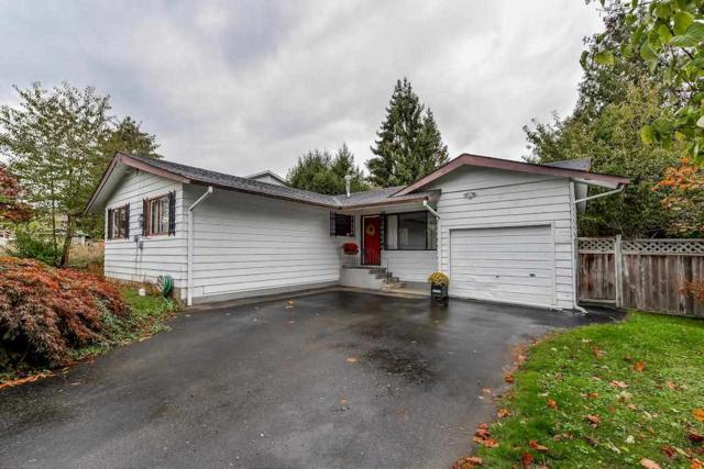 26923 28A Avenue, Langley, BC V4W 3A1 (#R2214788) :: Titan Real Estate - Re/Max Little Oak Realty