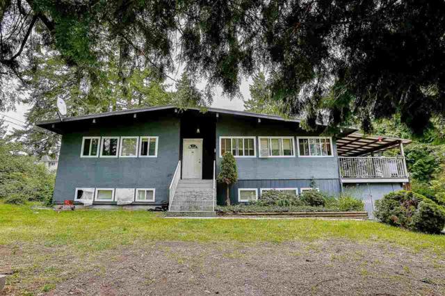 5938 132 Street, Surrey, BC V3X 1N1 (#R2214876) :: HomeLife Glenayre Realty