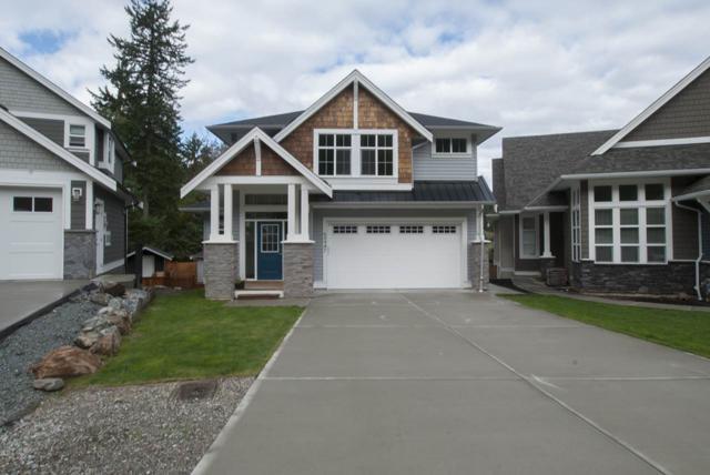 65947 Pine Crescent, Hope, BC V0X 1L1 (#R2215043) :: HomeLife Glenayre Realty